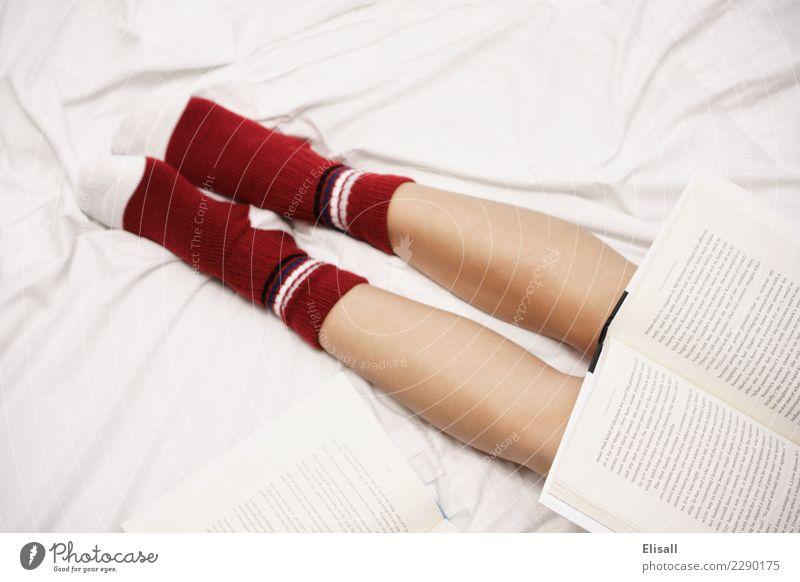 Gemütlich Lifestyle Freizeit & Hobby lesen Bett lernen heimwärts Erholung Buch Bettlaken Kniestrümpfe rot gemütlich Wärme Schüler Beine bequem Geborgenheit