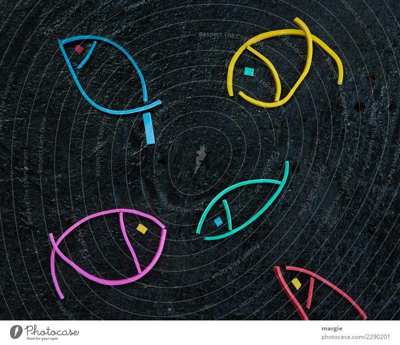Gummiwürmer: Fische Wasser Tier schwarz Tiergruppe