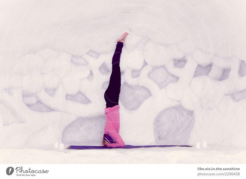 Mal die Perspektive ändern. Frau Mensch Jugendliche Junge Frau weiß Baum Erholung ruhig Winter 18-30 Jahre Erwachsene Leben Schnee Sport feminin Zufriedenheit