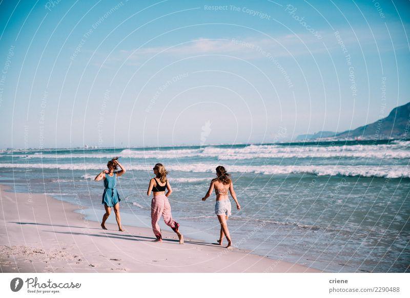 Gruppe younf erwachsene Freunde, die auf den Strand gehen Freude Glück Ferien & Urlaub & Reisen Sommer Meer Frau Erwachsene Freundschaft Lächeln Zusammensein