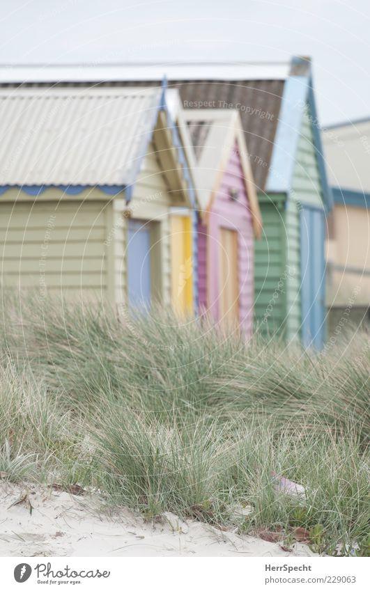 Am Strand Ferien & Urlaub & Reisen Sommer Strand Gras Sand Tourismus Düne Hütte Sommerurlaub Strandhaus