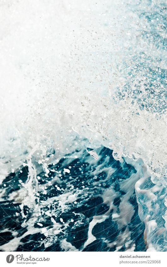 auf dem Weg nach Amrum Natur Wasser blau weiß Meer Umwelt Wellen nass Wassertropfen Flüssigkeit Brandung Gischt Wasserspritzer Wellenschlag