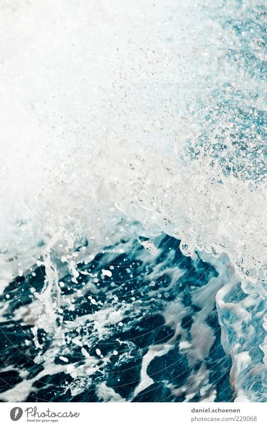 auf dem Weg nach Amrum Umwelt Natur Wasser Wassertropfen Meer Flüssigkeit nass blau weiß Wellen Starke Tiefenschärfe Menschenleer Gischt Wasserspritzer Brandung