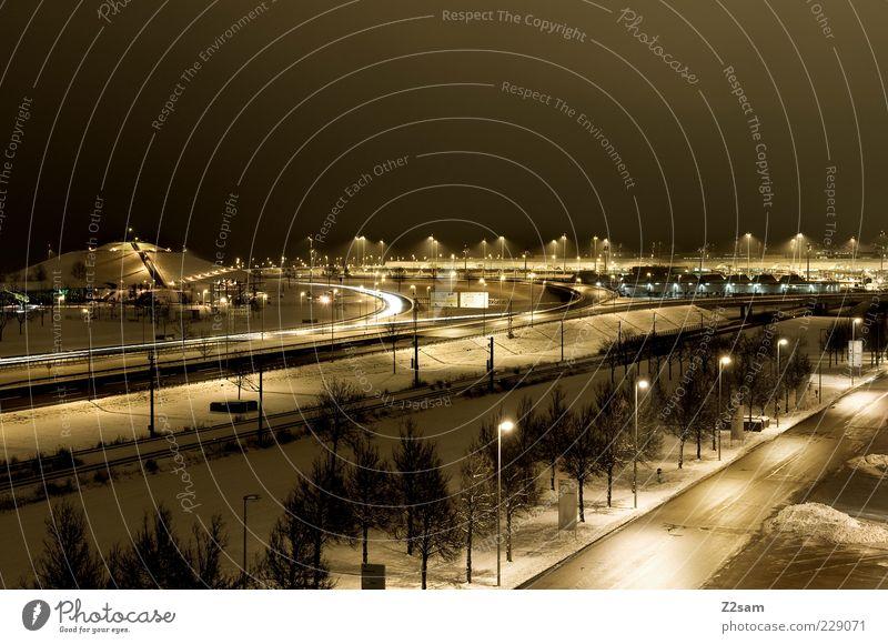 viele wege führen nach rom Stadt Baum Einsamkeit Winter Ferne gelb dunkel Straße kalt Wege & Pfade Park Eis Ordnung modern leuchten ästhetisch