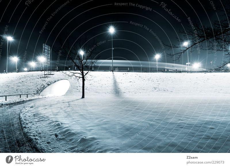 ruhestörer Umwelt Landschaft Nachthimmel Winter Eis Frost Baum Park Verkehrswege Straße Wege & Pfade Tunnel ästhetisch dunkel einfach kalt ruhig Einsamkeit