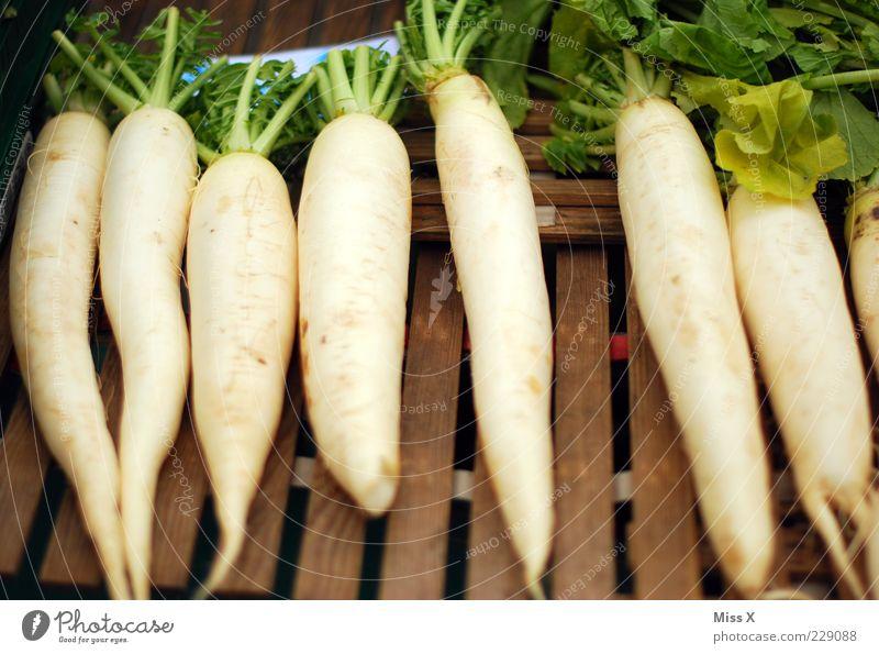 Radis Lebensmittel Gemüse Ernährung Bioprodukte Vegetarische Ernährung lang lecker Rettich Wurzelgemüse Wochenmarkt Gemüsemarkt Obst- oder Gemüsestand Farbfoto