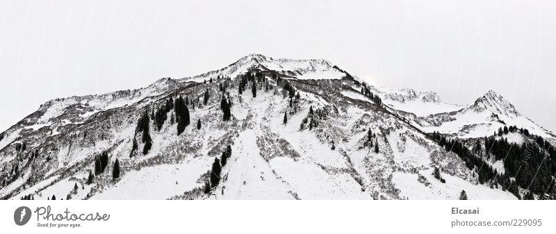 WHITE OUT Himmel weiß Winter schwarz Schnee Landschaft Berge u. Gebirge Nebel Alpen Panorama (Bildformat) Berghang schlechtes Wetter Schneebedeckte Gipfel