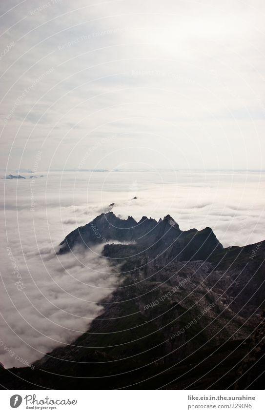 Über den Wolken Umwelt Natur Landschaft Urelemente Luft Erde Himmel Horizont Sommer Herbst Klima Wetter Schönes Wetter Nebel Dürre Felsen Alpen Berge u. Gebirge
