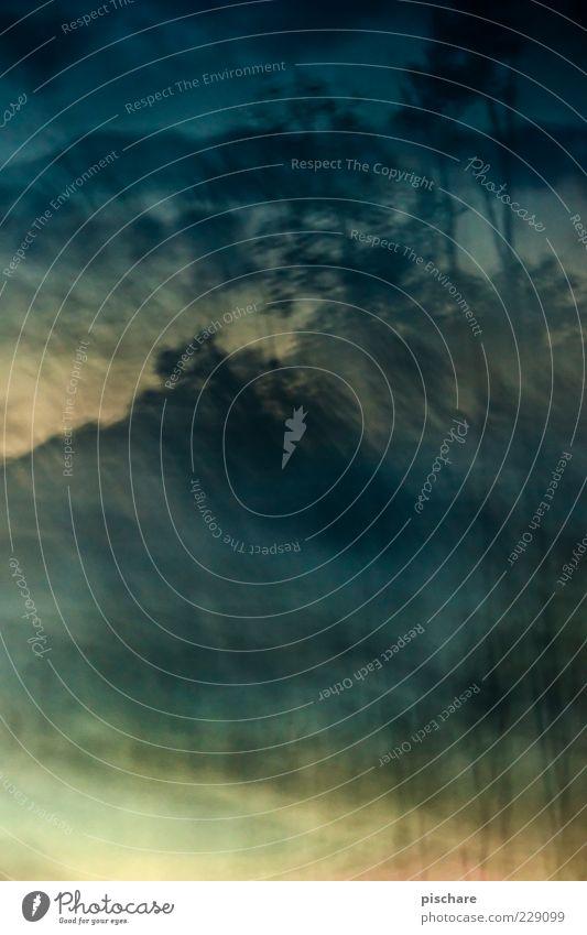 ein echter manun Natur Himmel Wolken Baum dunkel exotisch retro blau Endzeitstimmung Farbe Surrealismus Farbfoto Außenaufnahme Dämmerung Langzeitbelichtung