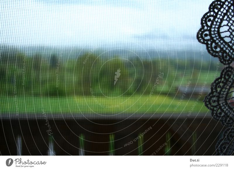 Alpenvorland Natur grün Wolken Fenster Landschaft Feld Dekoration & Verzierung Netz Idylle Alpen Balkon Geländer Bayern Spitze Gardine Borte