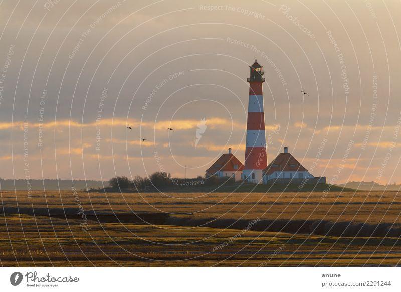 Nordlicht im Wattenmeer Ferien & Urlaub & Reisen Tourismus Freiheit Umwelt Natur Landschaft Wolken Sonnenlicht Wetter Küste Nordsee Leuchtturm Bauwerk