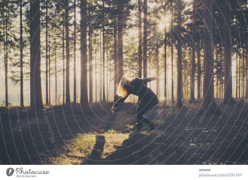Waldfee Frau Natur Jugendliche Junge Frau schön Baum Erholung Einsamkeit ruhig 18-30 Jahre Erwachsene natürlich feminin Bewegung Freiheit