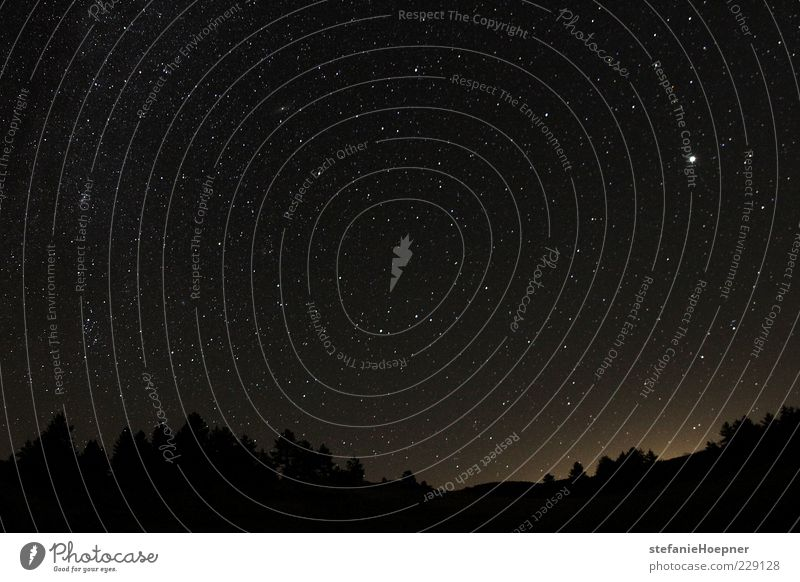 star filled sky Himmel Natur Ferien & Urlaub & Reisen Erholung Landschaft Ferne Wald Umwelt Lampe träumen glänzend Zufriedenheit leuchten Textfreiraum Zukunft