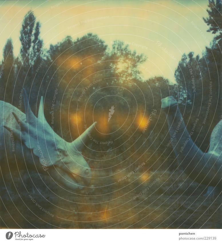 Polaroid zeigt zwei dinosaurierköpfe. Dinosaurier Nachbildungen in einem Freizeitpark. Freizeit & Hobby Natur wild Spreepark Himmel Monster ausgestorben Figur