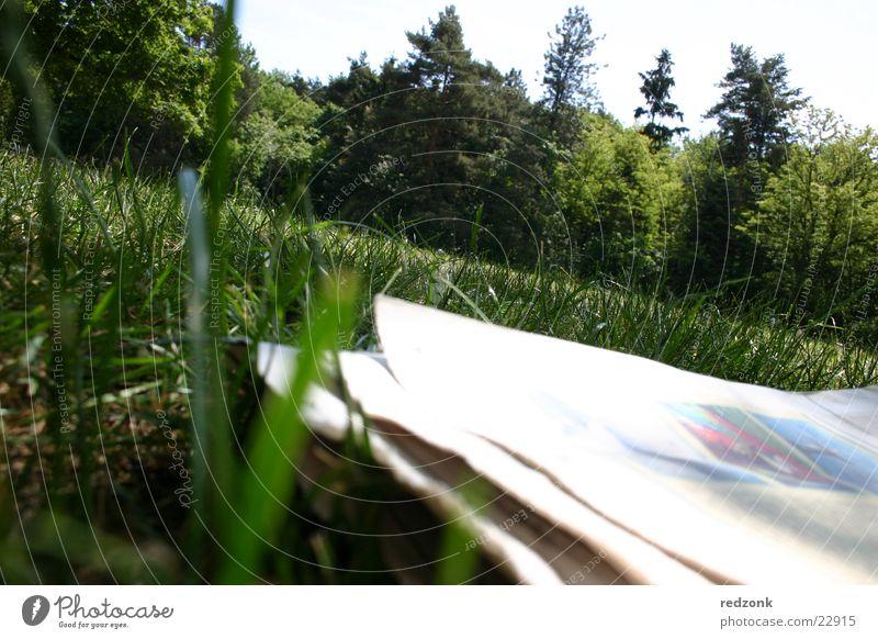 Zeitung auf Wiese Baum grün Zeitschrift Papier Freizeit & Hobby Erholung lesen Natur verrückt Neigung