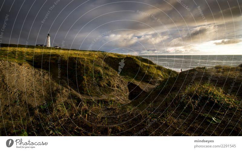 Leuchtturm Strand Natur Landschaft Erde Wasser Himmel Wolken Gras Küste Nordsee Düne gehen Unendlichkeit maritim blau gold grün Fernweh Einsamkeit Freiheit