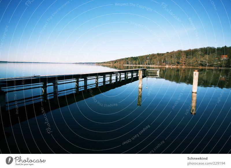 Draussen am See IV Himmel Natur Wasser schön Baum ruhig Ferne Wald Erholung Umwelt Freiheit Landschaft Holz Küste Luft
