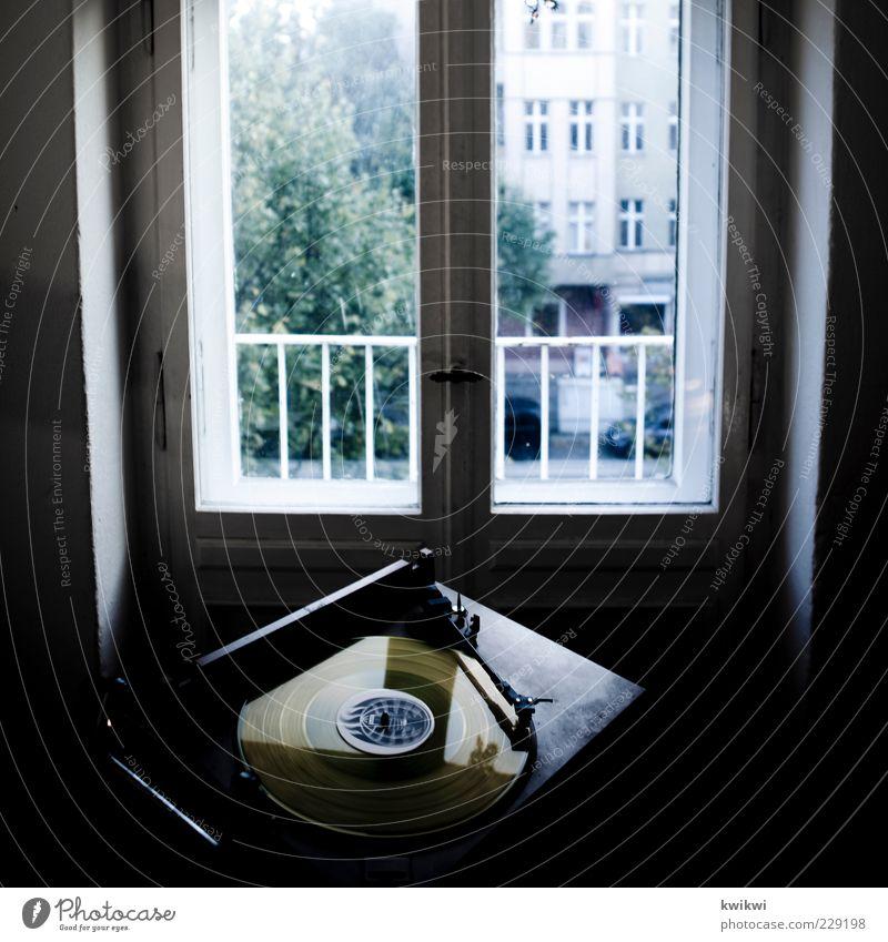 nachbarschaftsstreit Baum Freude Fenster Musik Raum Wohnung Fassade Lifestyle Häusliches Leben rund drehen Schallplatte Entertainment Altbau Fensterblick Plattenspieler