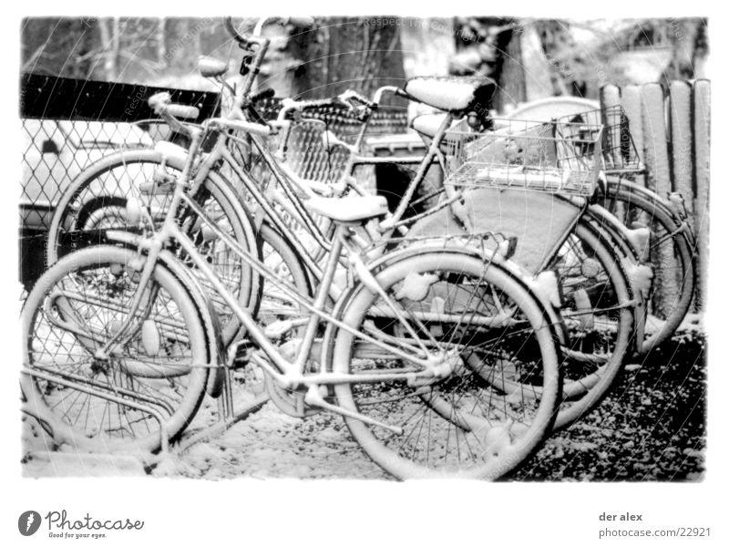 zuckerguss Winter kalt Schnee Eis Fahrrad Freizeit & Hobby bedecken Schwarzweißfoto Speichen Pedal Fahrradausstattung Fahrradständer erfrieren