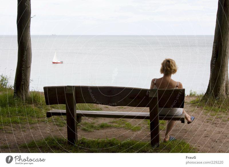 Meer betrachten Frau Mensch Himmel Wasser Baum Ferien & Urlaub & Reisen Sommer Meer ruhig Erwachsene Ferne Erholung Küste blond sitzen Aussicht