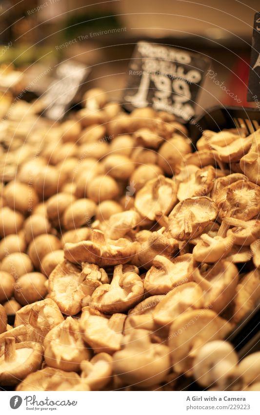 Beige im Angebot Ernährung Lebensmittel braun liegen frisch viele Pilz Markt Bioprodukte beige Ware Preisschild Vegetarische Ernährung roh Kartoffeln