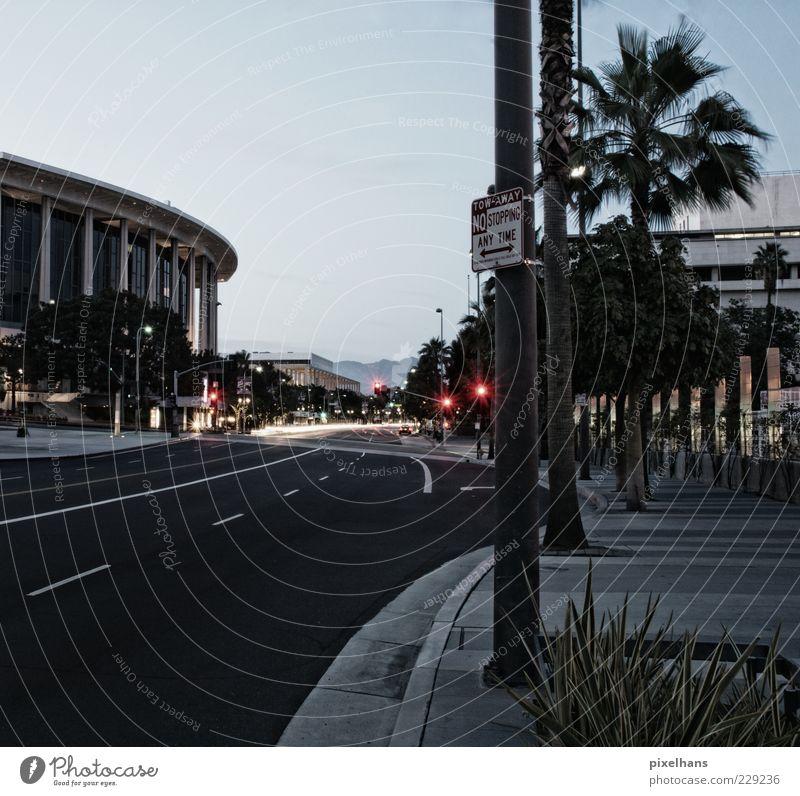 Pistenbefeuerung Ferien & Urlaub & Reisen Ausflug Sightseeing Städtereise Himmel Wolkenloser Himmel Sommer Pflanze Palme Los Angeles Kalifornien Nordamerika