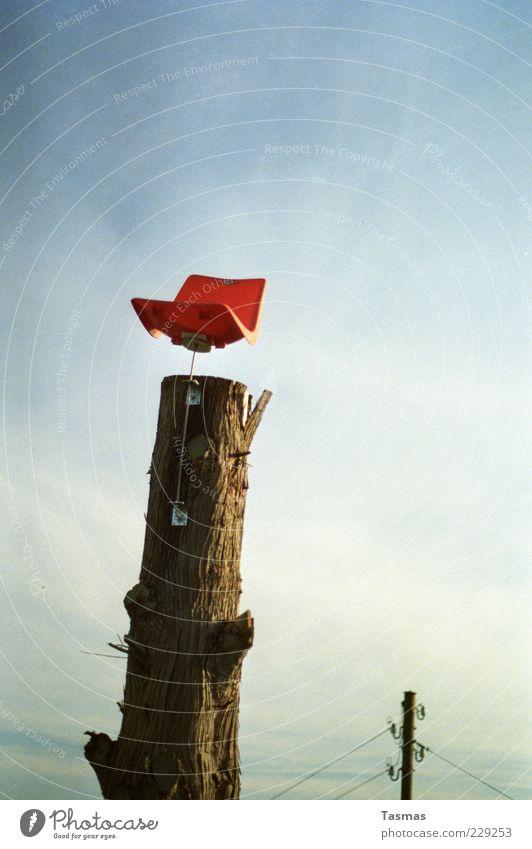 Hochsitz lustig außergewöhnlich oben leer Baumstamm Stuhl Sitzgelegenheit skurril Überwachung Wahrheit Befestigung Hochsitz Möbel überwachen Grotesk Plastikstuhl