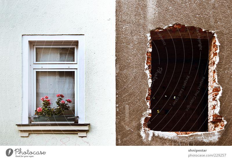 Teilsanierung alt weiß Haus Fenster Wand Mauer braun Fassade neu Baustelle Wandel & Veränderung Backstein Umzug (Wohnungswechsel) Loch Zukunftsangst Wirtschaft