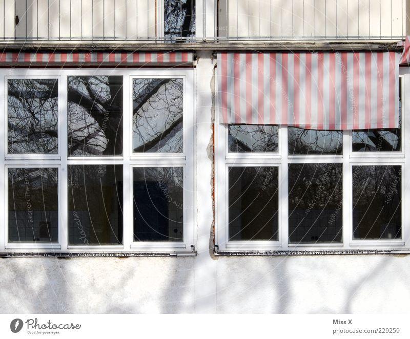 Domizil Haus Gebäude Fenster alt Unbewohnt Jalousie Stoffmuster Reflexion & Spiegelung Baum Farbfoto Außenaufnahme Detailaufnahme Muster Menschenleer