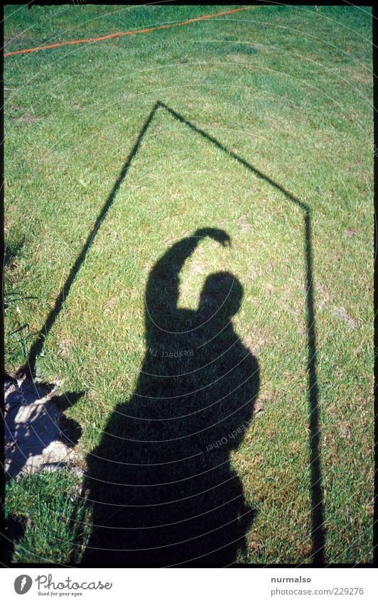 im kasten Mensch Pflanze Umwelt Gras Bewegung Rasen Schattenspiel