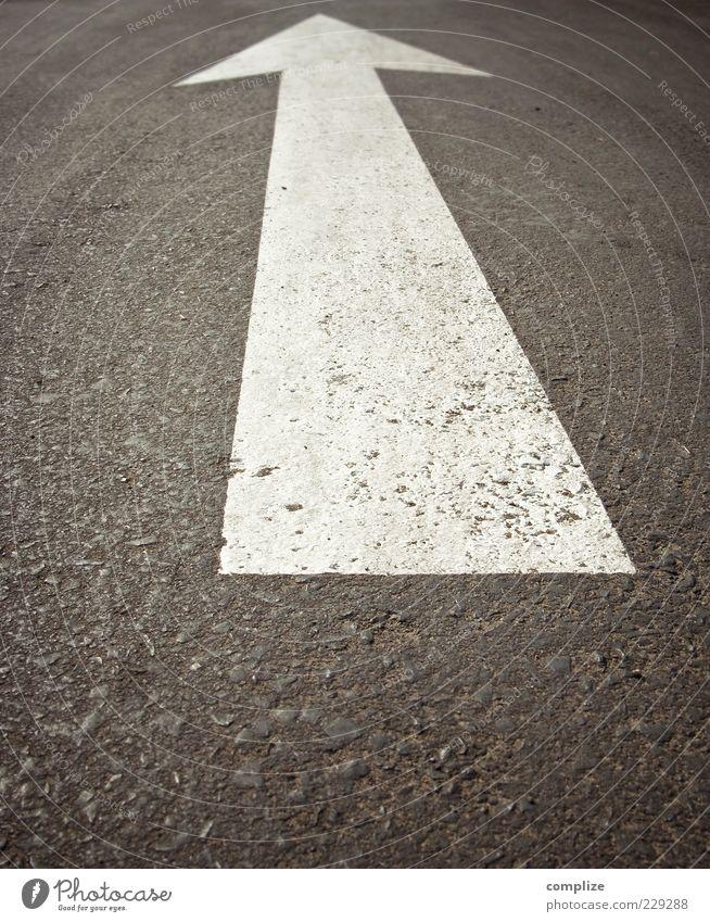 Geradeaus Verkehrswege Straße Zeichen Pfeil Unendlichkeit Asphalt Markierungslinie Farbfoto Außenaufnahme Textfreiraum unten Starke Tiefenschärfe