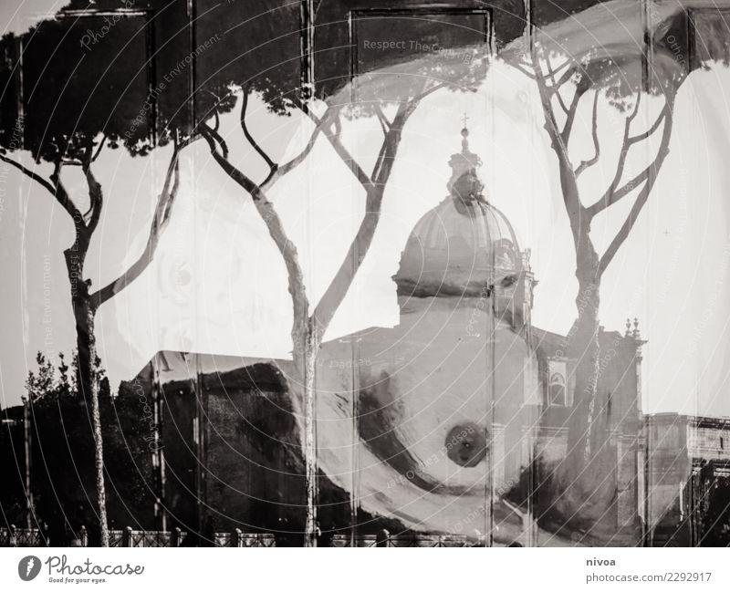 Brust in Rom Seniorenpflege Mensch feminin Frau Erwachsene Frauenbrust 1 Kunst Gemälde Sommer Wetter Baum Italien Hauptstadt Kirche Dom Bauwerk Gebäude