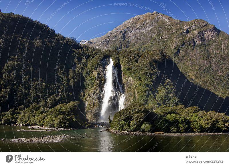piopiotahi Natur Landschaft Urelemente Wasser Wolkenloser Himmel Pflanze Felsen Berge u. Gebirge Küste Fjord Wasserfall außergewöhnlich Bekanntheit Fernweh