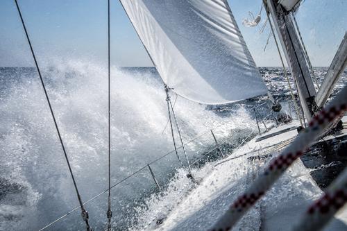 Sailing Ferien & Urlaub & Reisen Wasser Freiheit Wellen Kraft Wind Lebensfreude Abenteuer Wassertropfen Ostsee Segeln maritim Entschlossenheit Segelboot