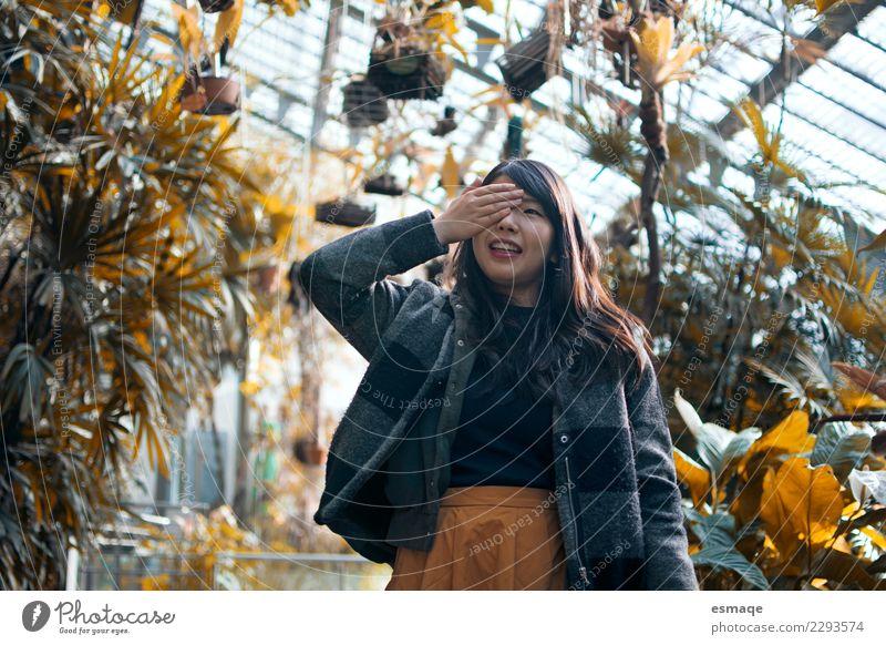 Natur Ferien & Urlaub & Reisen Pflanze Farbe schön Baum Blume Freude Lifestyle Glück Freiheit Mode Zufriedenheit frisch authentisch Fröhlichkeit