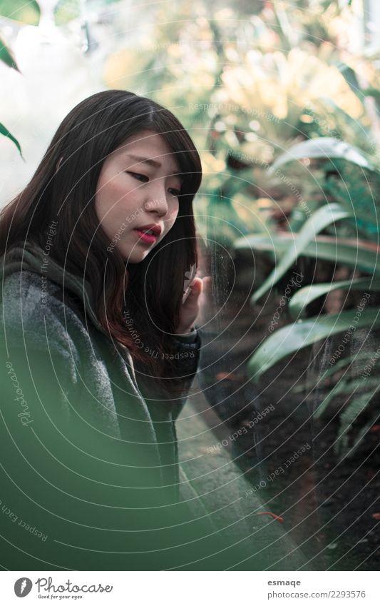 Asian Frau traurig Lifestyle exotisch feminin Junge Frau Jugendliche Natur Pflanze wählen beobachten Denken Traurigkeit authentisch natürlich niedlich trist