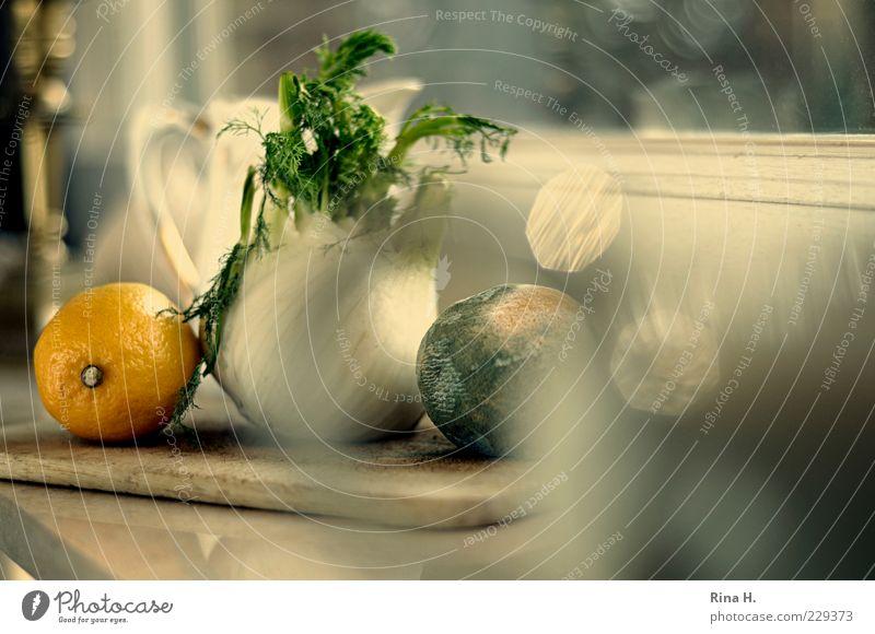 KüchenStill Gemüse Frucht natürlich Vergänglichkeit Zitrone Fenchel Fensterbrett verdorben Farbfoto Innenaufnahme Reflexion & Spiegelung Schwache Tiefenschärfe