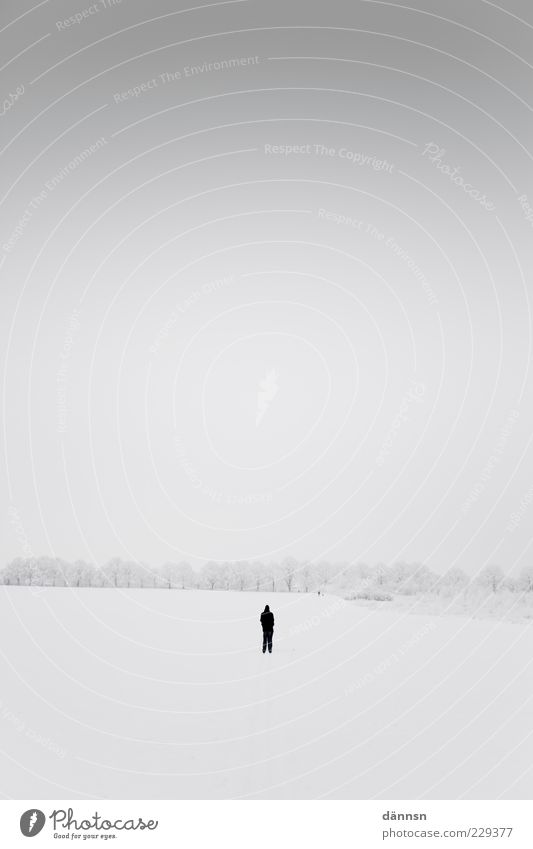 Einsam. Ausflug Abenteuer Winter Schnee Winterurlaub Mensch 1 Natur Landschaft Horizont Wetter Europa groß Unendlichkeit kalt grau weiß ruhig Angst Einsamkeit