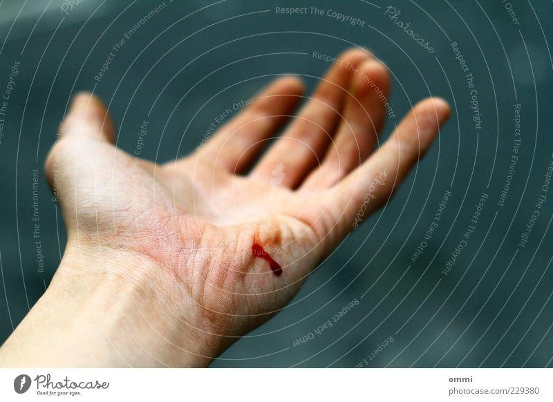 Fleischwunde Hand rot grau Haut Finger authentisch einfach Schmerz Blut Unfall Wunde Mensch Farbe Handfläche AIDS