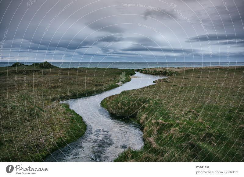flow Himmel Natur Pflanze blau grün Wasser Landschaft Meer Wolken Strand Frühling Wiese Küste Gras braun Horizont