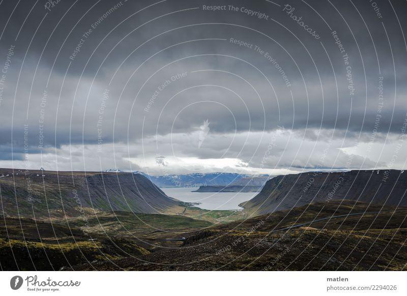 Himmel und Erde Natur Landschaft Pflanze Wolken Horizont Frühling Wetter schlechtes Wetter Wind Gras Felsen Berge u. Gebirge Schneebedeckte Gipfel Schlucht