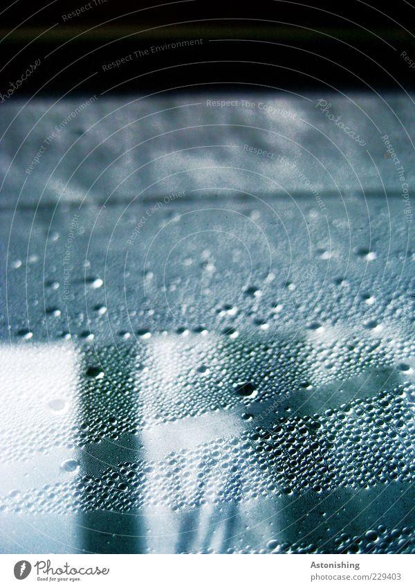Scheibenkleister? Umwelt Wasser Wassertropfen Wetter schlechtes Wetter Regen Eis Frost Fenster Holz Glas hoch kalt blau schwarz weiß Tropfen Tau Punkt Linie