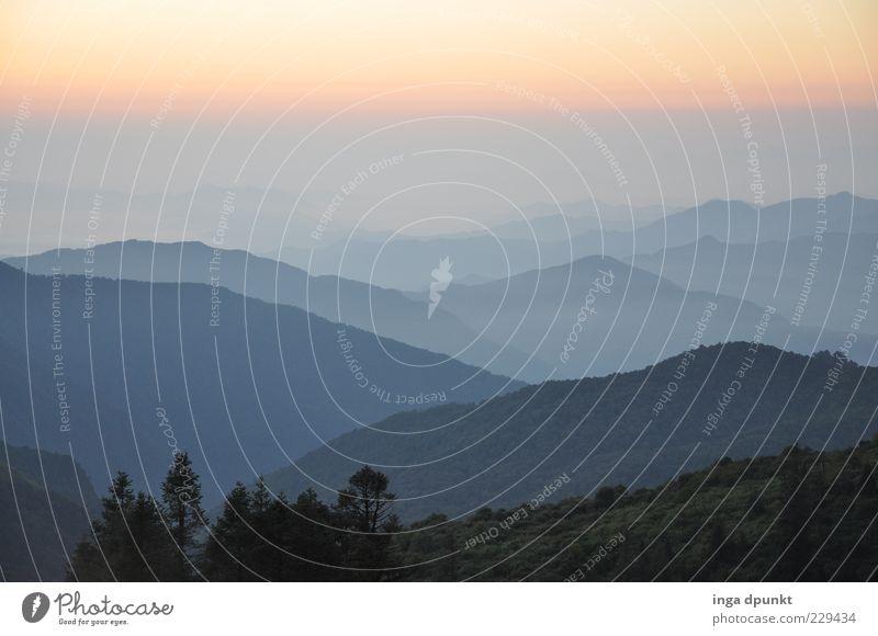 Poon Hill Natur blau Pflanze Ferien & Urlaub & Reisen Wald Erholung dunkel kalt Umwelt Landschaft Berge u. Gebirge Luft Zufriedenheit Nebel Tourismus beobachten