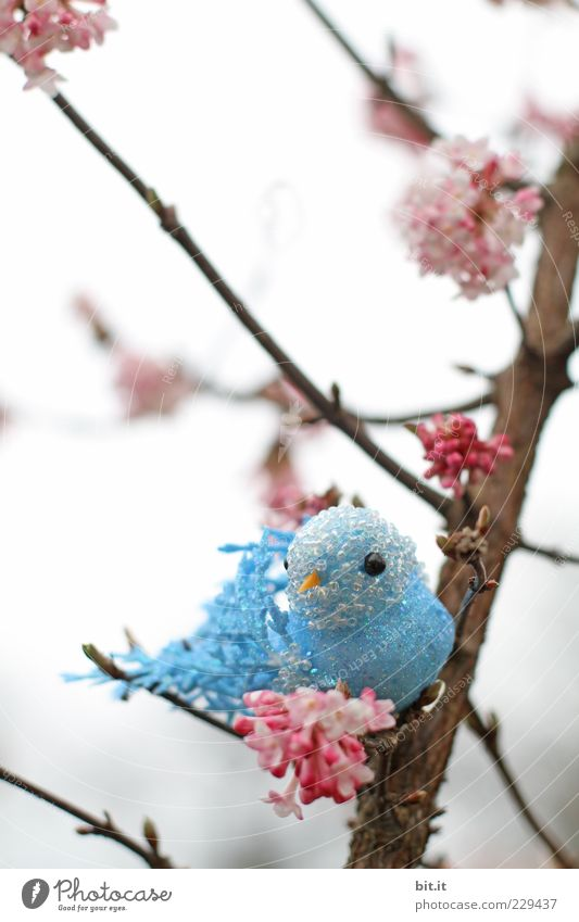 Hansi im Glück blau Baum Blüte Vogel rosa Dekoration & Verzierung Sträucher Kitsch Kunststoff Spielzeug trashig Zweig Figur Perle Blütenknospen falsch