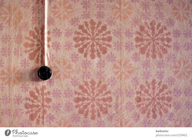 flower power Design Häusliches Leben Wohnung Dekoration & Verzierung Tapete Raum Blumenmuster Steckdose Wand Mauer Ornament alt Kitsch retro trashig violett