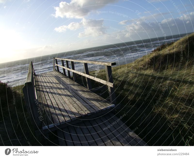 Steg Himmel Natur Wasser Meer Strand Einsamkeit Ferne Herbst Umwelt Landschaft Holz Sand Küste träumen Stimmung Wellen