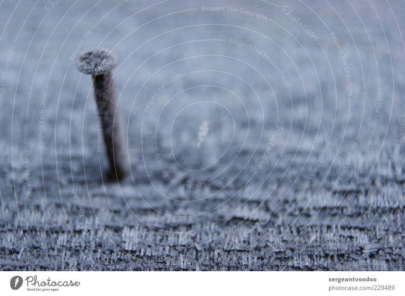 Nagelneues Foto ruhig Holz grau klein Metall Stimmung braun fest Rost Holzbrett standhaft