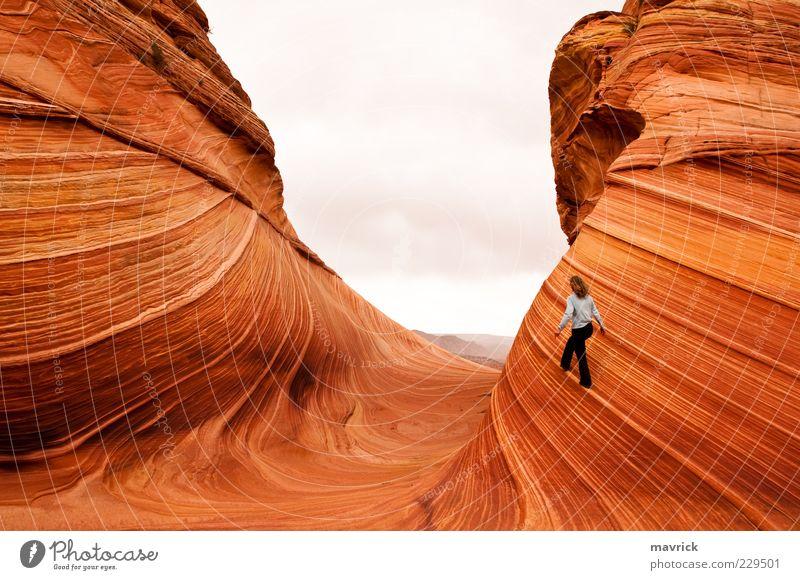 auf der schmalen Linie gehen Abenteuer 1 Mensch Landschaft Erde Sommer Ferien & Urlaub & Reisen wandern exotisch wild gelb Stimmung Tatkraft schön Leben Fernweh
