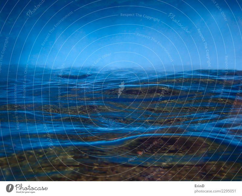 Abstrakte blaue Oberfläche von Ozean Unterwasser umgedreht umgedreht Ferien & Urlaub & Reisen Farbe Meer Tier ruhig Tourismus braun Wellen nachdenklich nass