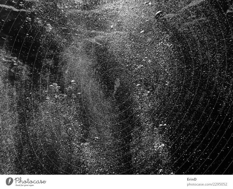 Schwarzweiss-Wand der Luftblasen unter Wasser Freude schön Erholung Abenteuer Meer Tapete Sport Natur atmen einzigartig nass grau schwarz weiß Tauchgerät